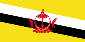 Landskod Brunei